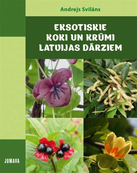 Eksotiskie koki un krūmi Latvijas dārziem - Jumava