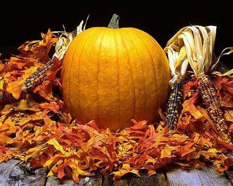 autumn harvest autumn wallpaper 24582607 fanpop