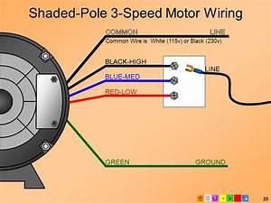 E2 Motors And Motor Starting  Modified