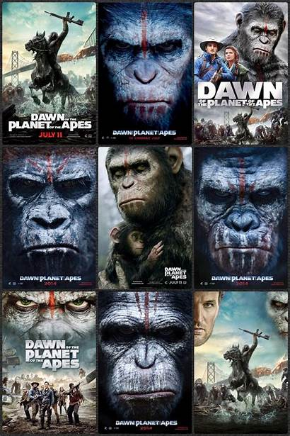 Apes Planet Movies Dawn Movie Poster Film