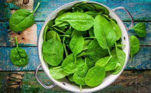 alimenti per dieta vegetariana 5 fonti di ferro per i vegani alimenti ricchi di ferro