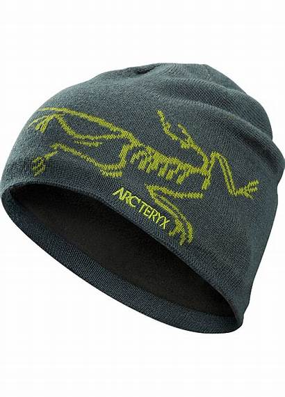 Bird Head Toque Arcteryx Bonnet Teryx Arc