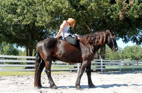 yoga equine human horse horses connection horseback farm between connect riding rides yourself nature cypress
