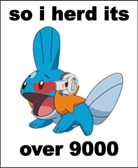 image 314 i herd u like mudkips your meme