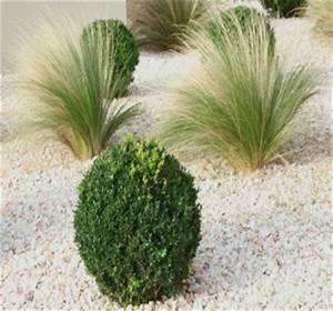 amenager votre jardin en pente nos conseils habitatpresto With comment realiser un jardin zen 2 creer un jardin zen et mineral astuces conseils et