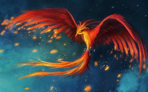 phoenix bird wallpapers flight art phoenix bird