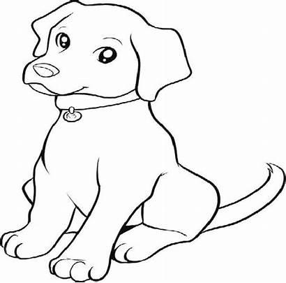 Coloring Lab Puppies Labrador Retriever Puppy Dog