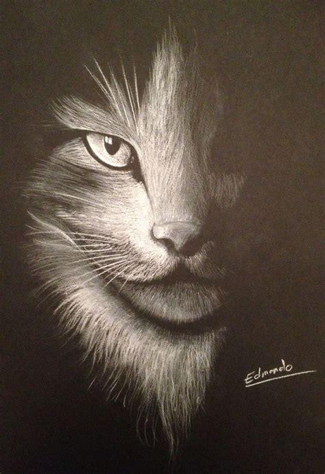 Dessin Sur Papier Noir Les 17 Meilleures Images Du Tableau Portrait Dessin Sur Dessin Realiste Envie