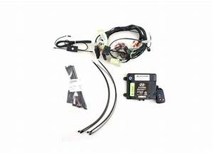 find new oem hyundai santa fe 10 11 12 remote start With motorcycle alarm