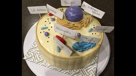 making  animal cell model  cake fondant great