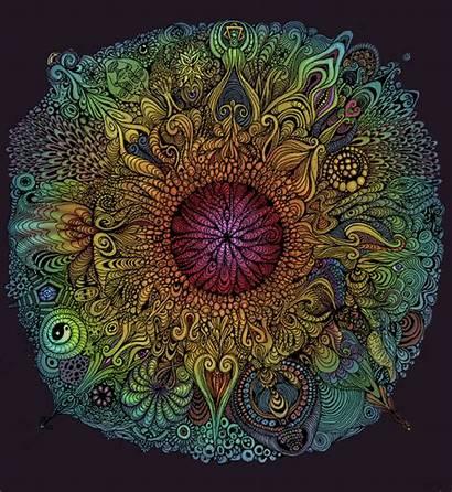 Mandala Nieve Psychodelic Animated Falk Animation Sacred