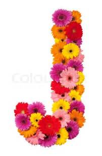 sunflower corsage letter j flower alphabet isolated on white background