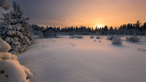 real finland winter    landscape