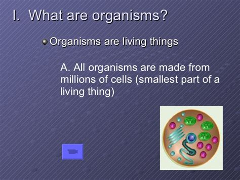 chapter  living organisms