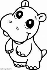 Hippo Coloring Pages sketch template