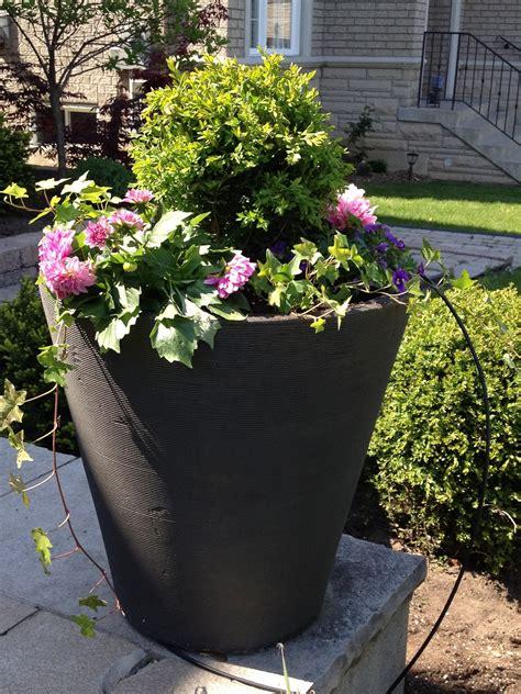 outside flower arrangements outdoor flower pots arrangements ask home design