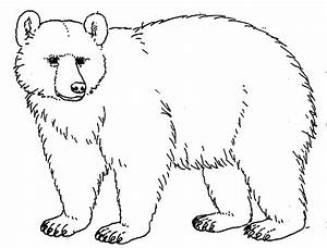 Bear black and white black bear clipart outline black and ...