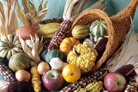 The Story Of The Cornucopia The Horn Of Plenty