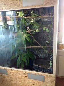 Pflanzen Für Drinnen : nun ist alles drinnen erde pflanzen und einen wasserfall das forum f r alle tierfreunde ~ Frokenaadalensverden.com Haus und Dekorationen