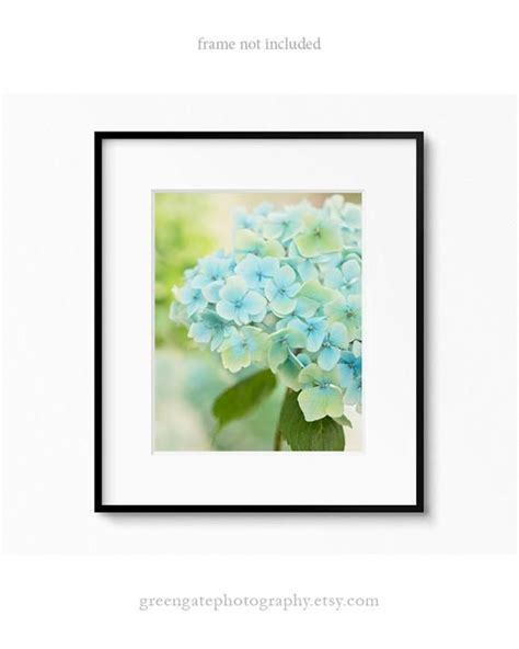 Impress your guests with our. Hydrangea Photo Print - flower photography, hydrangeas art ...