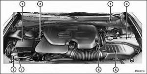Engine Compartment  U2014 3 6l    Maintaining Your Vehicle
