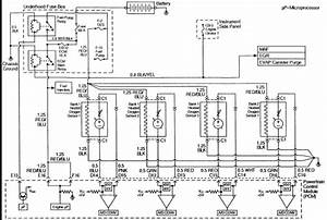 2001 Isuzu Automatic Transmission Diagram