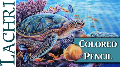 colors of the turtles colored pencil sea turtle part 2 demonstration w lachri