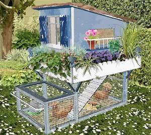 Petit poulailler bleu pour petit jardin en ville pot de for Amenagement d un petit jardin de ville 4 poulailler pour petits jardins plan poulailler bio