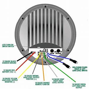 Bazooka Bass Tube Wiring Diagram