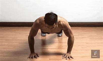 Pompes Muscler Pectoraux Qui Quels Sont Triceps