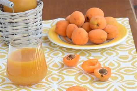 succo di frutta fatto in casa succo di frutta all albicocca fatto in casa la cascata