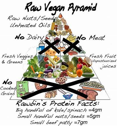 Raw Vegan Pyramid Diet Foods Cancer Eating