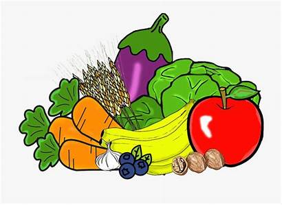 Vegetables Clipart Fruit Fruits Clipground Grains Cliparts