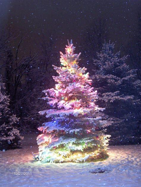 rainbow christmas tree moments2give holly jolly xmas