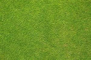 Grass Football Pitch Print Background Wallpaper Edible A4
