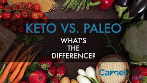 The Key Differences Between Paleo And Keto Diet