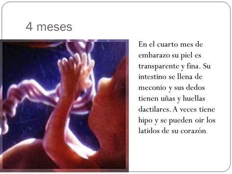 Etapas Del Embarazo Parto Y Lactancia  Ppt Video Online
