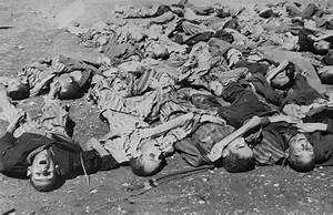 Corpses Lie In A Pile On The Ground In The Newly Liberated
