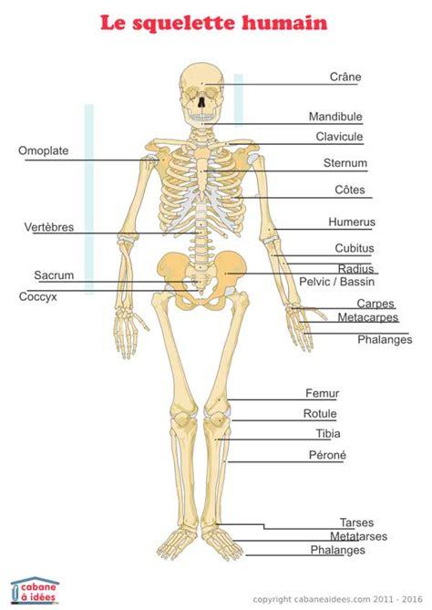 jeux de ranger les chambre squelette humain schéma cabane à idées
