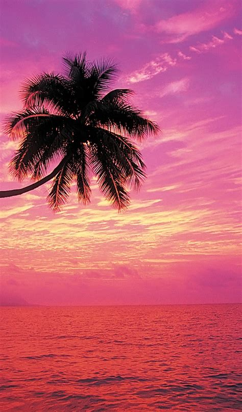 sunset beach rainbow kindle fire backgrounds wallpapers amazon desktop galaxy comments