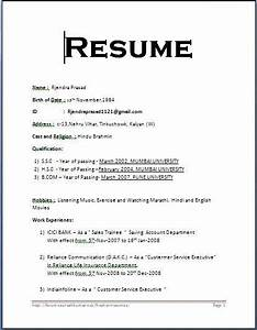 Resume easy maker