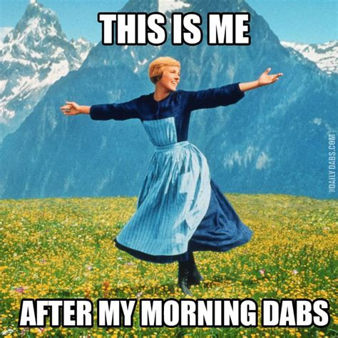 Dab Meme 14 Best Images About Dab Memes On Dab