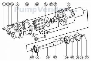 Jabsco Pump Wiring Diagram : jabsco 43210 0001 parts list ~ A.2002-acura-tl-radio.info Haus und Dekorationen