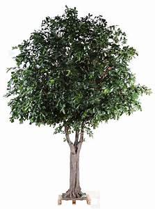 Arbre En Pot : chene arbre artificiel 350 cm de haut 2 ~ Premium-room.com Idées de Décoration