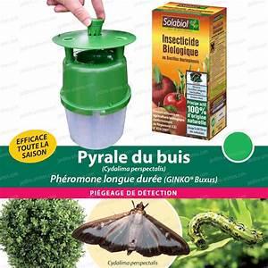 Pyrale Du Buis Traitement Bayer : traitement bio contre la pyrale du buis cydalima ~ Dailycaller-alerts.com Idées de Décoration