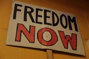 The Sunflower County Freedom Project - 2013 documentary ...