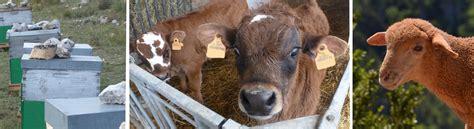 chambre agriculture paca la production animale en paca provence alpes côte d 39 azur