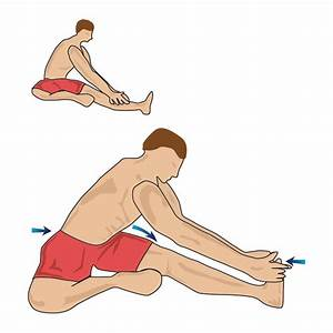 Hamstring stretch in the sitting position
