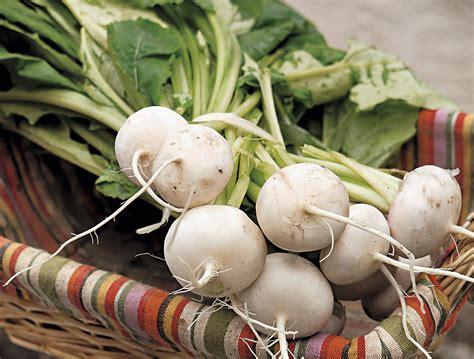 legume a cuisiner légumes apprenez à cuisiner les fanes détente jardin
