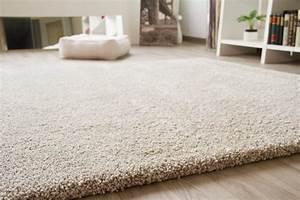 Teppich Grün Braun : langflor hochflor teppich chamonix shaggy creme beige grau gr n braun rot t rkis ebay ~ Markanthonyermac.com Haus und Dekorationen